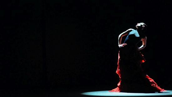 Carlos Saura Flamenco Flamenco Hoy de Carlos Saura